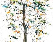 PATTISON Tree, ACEO Print