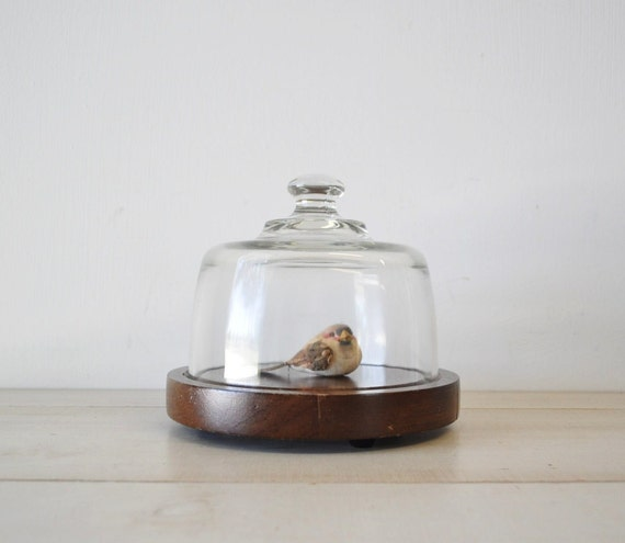 reserved for karla vintage glass dome with wooden bowl tray--cloche---cheese tray--display