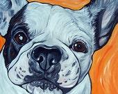 FRENCH BULLDOG dog art print white orange bright colors 8x10