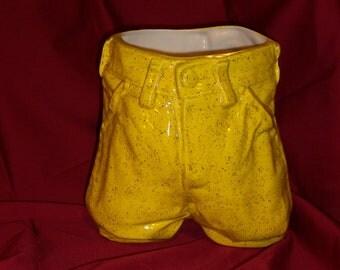 Sun Yellow Demin Shorts Planter