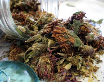 Dried Red Clover Tops Blossoms dried herb 1 ounce free shipping if ordered with another item
