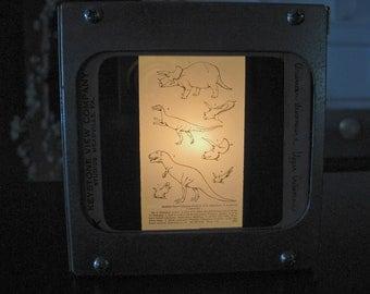 AMERICAN DINOSAURS - Vintage magic lantern glass slide light box