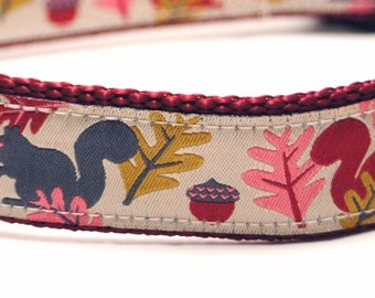 Frisky Squirrels in Burgundy - Custom Dog Collar