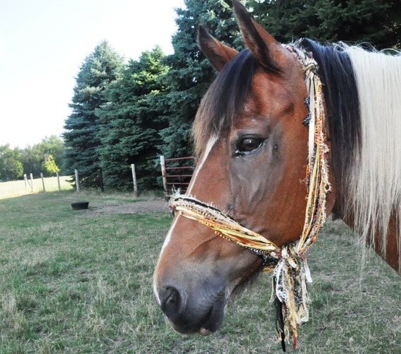 Horse Halter Fringie - You Choose Colors - Multi-texture hand tied horse halter / scarf / photo prop