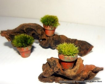 3 Miniature Terra Cotta Pillow Moss Pots-Moss Filled pots only here