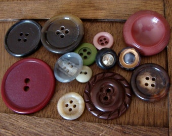 Beautiful Vintage Buttons Nature Collection Button Lot