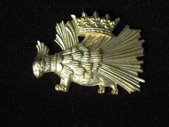 Crowned royal hedgehog or porcupine