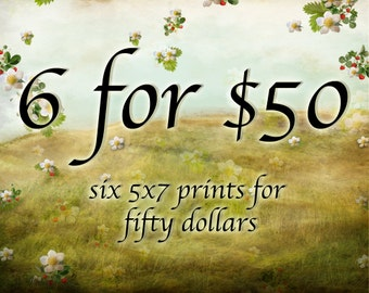 Special Savings - Six 5x7 Giclee Art Prints - Save on Multiple Prints - Any six of my illustrations Small Size