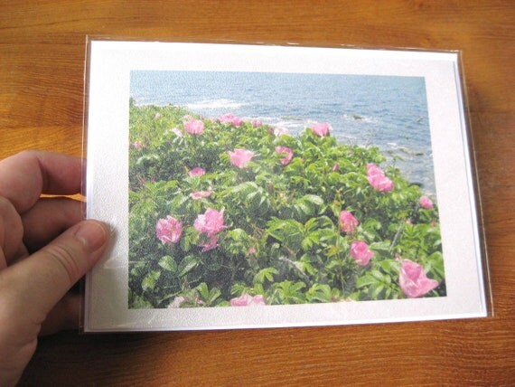 Notecard - Pink Roses by the Ocean - Seascape Photo - Blank Greeting