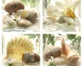 Spa Garden Print Set - Seashells, river rocks and flowers, soft hues of green, cream and brown.  Seashell art.  Perfect bathroom art.