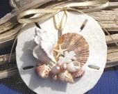SPECIAL TO JACQUE beach sand dollar no 4, Christmas ornament, seashells, beach decor, elegant, nautical ornament