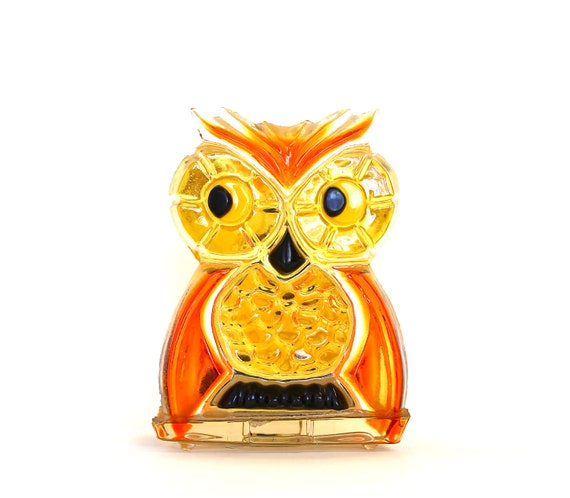 Owl Hold Your Napkins - Vintage Acrylic Napkin Holder - Vintage Home Decor - Vintage Halloween - Vintage Owl