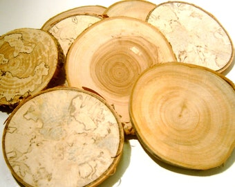 "250 Large Assorted  Blank Tree Branch Slices 3."" to 3.5  inch Coaster Size"