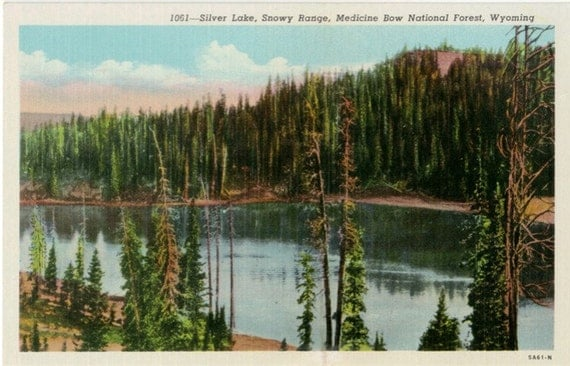 Vintage Wyoming Postcard - Silver Lake, Snowy Range, Medicine Bow National Forest
