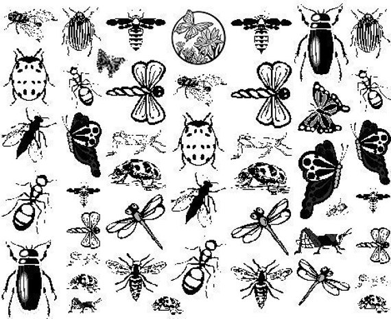 Enamel Decals in Black for Glass Fusing or Ceramic Applications (enamelbugs)