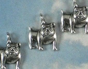 10 Bulldog Charms 17mm x 13mm Antiqued Silver (P731)