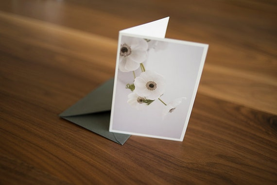 """White Anemone 3.5"""" x 5"""" blank note card (boxed set of 6)"""
