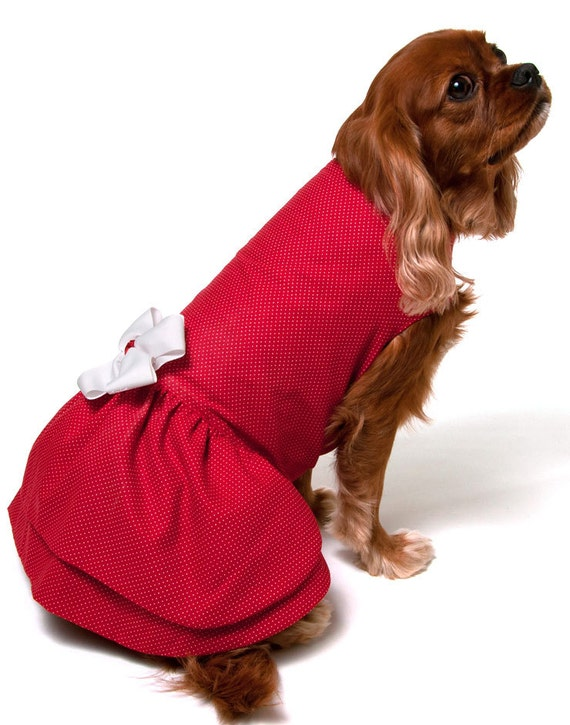 Red Dog Dress