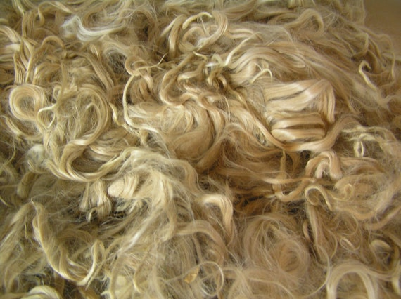 "Suri Alpaca, Unwashed Locks, Light Fawn, 1 lb, 7"" average locks up to 9"""
