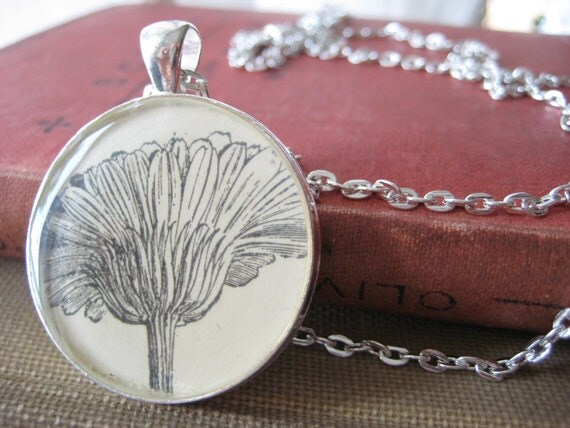 Vintage Botany textbook Marigold illustration in Silver Plated Pendant