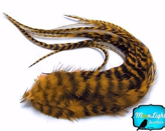 Hair Feathers, 6 Pieces - GOLDEN OLIVE Thick Long Grizzly Rooster Hair Extension Feathers  : 820