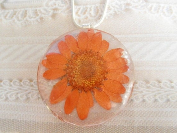 Orange Daisy Pressed Flower Round  Domed Glass Pendant-Nature's Wearable Art-Symbolizes Innocence, Loyal Love