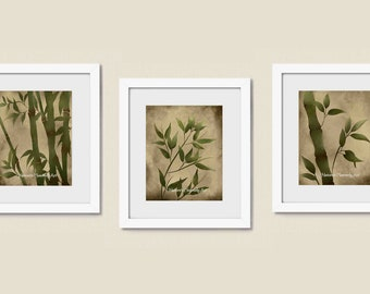 Tropical  Decor 8 x 10 Print Set of 3, Nature Print Green Bamboo Art, Natural Earthy Colors