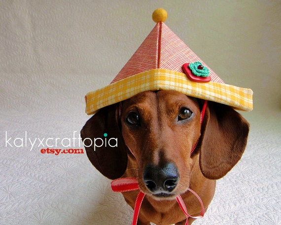 Sweet Yellow Red Aqua Plaid Birthday Hat for Dachshunds and other pups