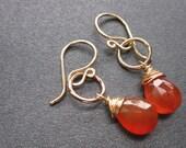 Mini Hoop Gemstone Earrings - Orange Carnelian - 14k Gold Fill handmade wire wrapped