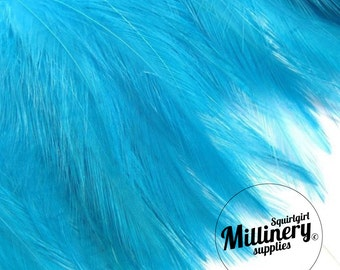 Turquoise Hackle Feather Fringe for fascinators, millinery and crafts (Around 60 feathers)
