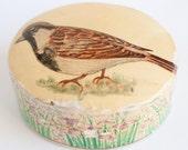 Beautiful wooden BIRD TRINKET BOX