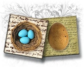 Nests, Birds and Egs 2 Inch Squares Digital Collage Sheet Download and Print