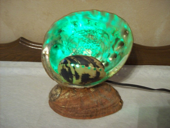 Vintage 1950's Natural Abalone Shell TV Lamp, Unique