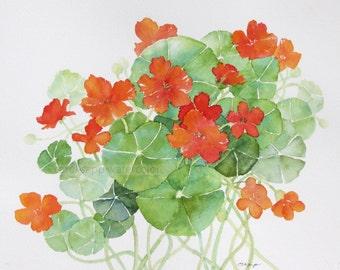 "Nasturtiums watercolor original painting 8"" x 10"""