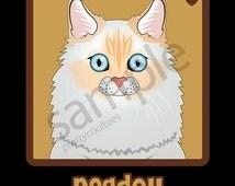 Ragdoll Cat Cartoon Heart T-Shirt Tee - Men's, Women's Ladies, Short, Long Sleeve, Youth Kids (Flame-point)