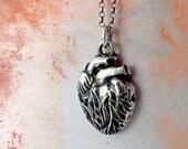 Anatomical Heart Necklace. Fine Silver Pendant on Sterling Silver Chain. Silver Anatomical Jewelry