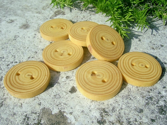 8 SPRUCE Tree Branch Wooden Buttons, 1 1/4  inches in diameter