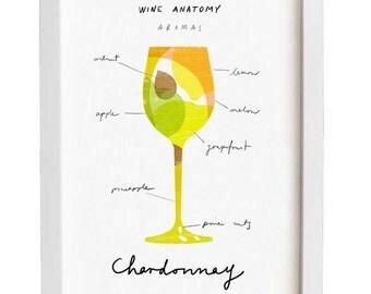 "Art for wine lovers - Wine Anatomy print - Chardonnay Illustration - 11""x15 - archival fine art giclée print"
