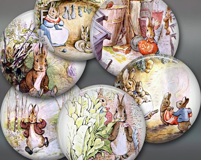 "3.5"" peter rabbit fridge magnets, bunny magnets, beatrix potter decor, set of 6 magnets, kitchen decor, large fridge magnet, magnet set"