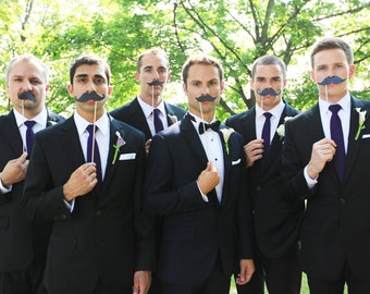 Mustaches and Lips Photo Prop on a Stick Photo Booth Prop Set of 24 assorted ASSEMBLED