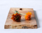 Cottage Cutting Board, Natural Edge Salvaged Maple Wood 669, Ready to Ship