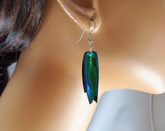 Earrings Elytra Green Iridescent Beetle Wings