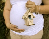Nesting Mama Birdhouse Pregnancy Photo Prop
