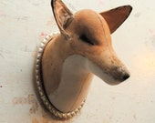 Large Fox Textile taxidermy head on vintage tray mount.