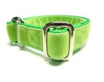 """Houndstown 1"""" Green Apple Tag Collar, Adjustable"""