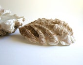 Edible Oyster Shells -Chocolate Candy in a Half Shell -6 Large