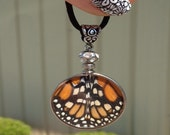 Real Actual Monarch Butterfly Wing Necklace Grown and Created in North Carolina