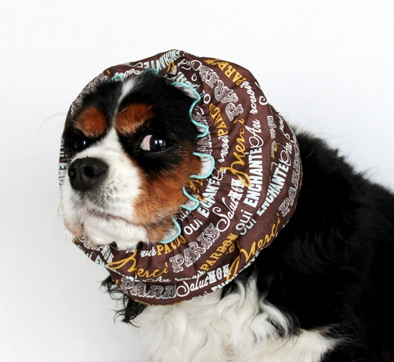 Paris Sayings Dog Snood  / Cavalier King Charles or Cocker fabric ear covering / 3 Row Elastic Thread