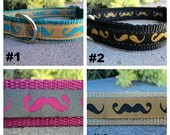 """Sale Mustache Dog Collar 3/4"""" or 1"""" width adjustable side release / no martingales very limited"""