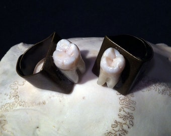 YOUR TOOTH Made Into Antique Brass Chunky Style Adjustable Ring